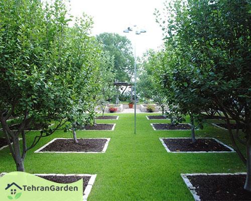اصول طراحی باغ میوه